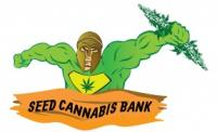 Seed Cannabis Bank